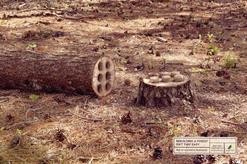 Envol Vert Organisation: Tree in pieces