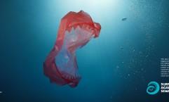 Surfers Against Sewage: Sea Monsters